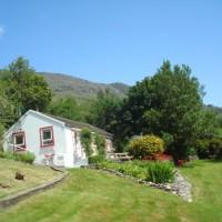 Cottage_garden_5.JPG